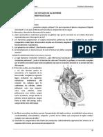 UT v Estructura y Procesos Vitales en El Hombre- Aparato Cardiovascular- 2016