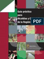 116703-GUÍA PRÁCTIVA. texto definitivo[1].pdf