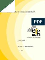 modulo de curriculum-Ciucci.pdf