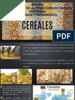 UNIDAD I - Cereales y Leguminosas