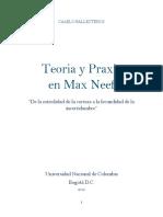 Teoria y Praxis en Max Neef