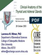 2003-10-28_thyroid-adrenal.pdf