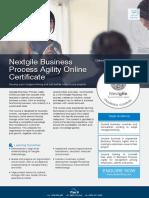 Nextgile Business Process Agility Online Outline
