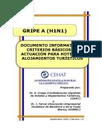 gripe-20a-20h1n1.pdf