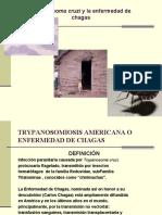 Chagas TM