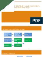 Auditor Interno Seguridad y Salud Ocupacional Ley 29783