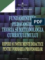 Fundamentele Pedagogiei. Teoria Si Metodologia Curriculumului - Musata Bocos, Dana Jucan