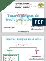 Tumores Benignos Del Aparato Genital Femenino.