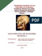 Guia de Practica AF 142.Docx