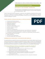11530570591Temario-EBR-Nivel-Secundaria-Comunicación.pdf