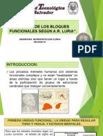 TEORÍA DE LOS BLOQUES FUNCIONALES SEGÚN A.pptx