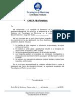 Carta Responsiva