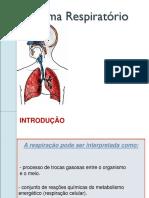 Sistema Respiratório Fisica