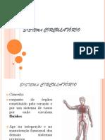 Sistema Cardiovascular Aula Pronta