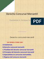 Conc Mer Presentación1