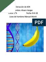 Extracción de ADN (1).docx