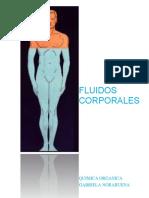 Quimicafluidoscorporales 141203211529 Conversion Gate01 (1)
