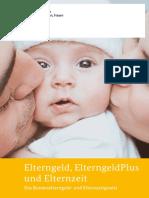 elterngeld-elterngeldplus-und-elternzeit-data.pdf