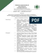 022 Sk Persyaratan Kompetensi Ketenagaan Kepala Puskesmas, Penanggung Jawab Upaya Dan Pelaksana Kegiatan Pkm