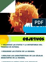 ciclocelularmeioisis-140326085410-phpapp02