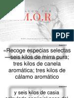 Predica PPT - Haz Algo Por Amor4