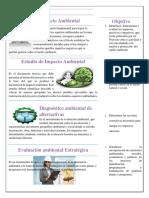 Boletín Informativo (2)