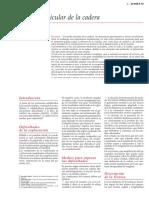 Estudio articular de la cadera.pdf