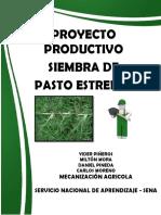 Proyecto Productivo - Pasto Estrella 1
