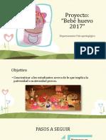Proyecto Bebé Huevo 2017