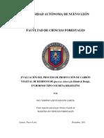 EVALUACIÓN DEL PROCESO DE PRODUCCIÓN DE CARBÓN VEGETAL DE RESIDUOS .pdf