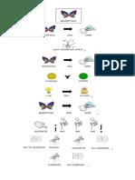 pictograma poema mariposa.docx