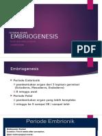 Rizky Nur A.K_Tutorial Klinik_Embriogenesis.pptx