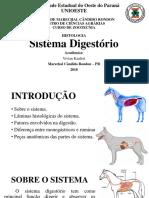 Histologia do sistema digestório
