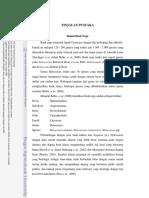 Bab II Tinpus A10tis-4.pdf