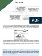 CARACTERIZACIÓN DE LLA.pptx