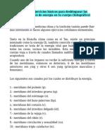 Ejercicios Meridianos.doc