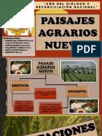 6. PAISAJES AGRARIOS NUEVOS.pdf