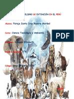 ANIMALES_EN__PELIGRO_DE_EXTINCION_EN_EL_PERU.docx