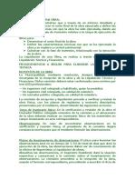 liquidaci_n_de_una_obra_procedimiento.doc