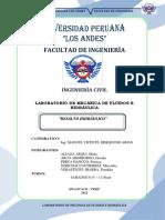 101371353.pdf