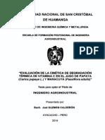 Tesis AI148_Guz.pdf
