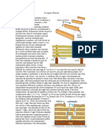 secagem.pdf
