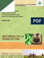 Bacterias en La Agricultura