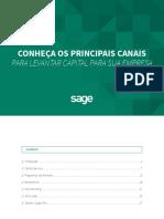 E-book Levantar Capital Para Sua Empresa-1
