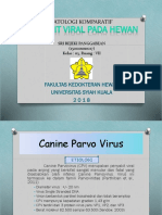 Canine Parvo Virus