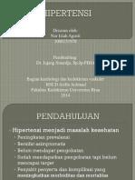 Case HHD