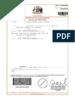 ANT_500194605485_14129219.pdf