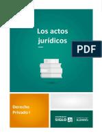 Acto jurídico.pdf