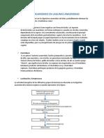 MICROORGANISMOS-EN-LAGUNAS-ANAEROBIAS.docx