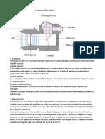 Funcionamiento y Partes de La Cámara Réflex Digital